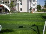 Sân cỏ nhân tạo Quy Nhơn